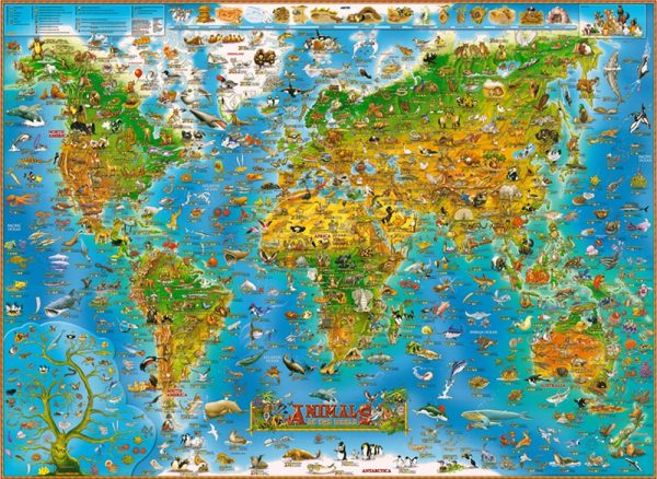 World Map Jigsaw Puzzle 1000 Pieces